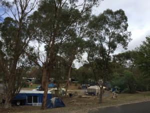 """""""Happy campers"""" al campeggio di Maldon"""